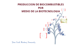 Copy of Biocombustibles por medio de la Biotecnologia