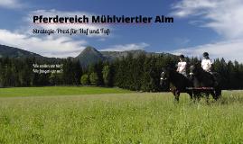 Online-Strategie: Pferdereich Mühlviertler Alm