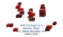 Copy of Cell Analogy to a Soccer Team