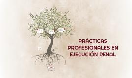 PRÁCTICAS PROFESIONALES EN EJECUCIÓN PENAL
