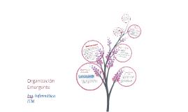 Copy of Organización Emergente