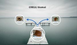 marketing plan about siomai