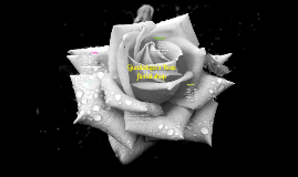 floral shopp