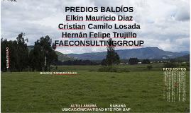 PREDIOS BALDÍOS