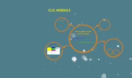 CLIL MODULE