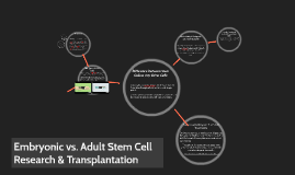 Embryonic Stem Cell Research & Transplantation