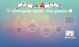 Biological factor: The glands