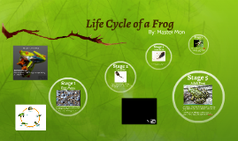 Copy of Life Cycle of a Frog