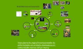Rol del Veterinario en la Conservación In Situ