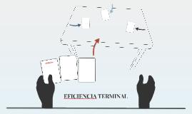 EFICIENCIA TERMINAL