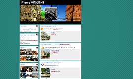 Pierre VINCENT_pres