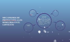 MECANISMOS DE protection A LOS DERECHOS EN EL CONTEXTO