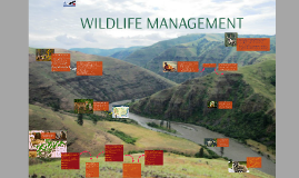 Wildlife Management PIMR