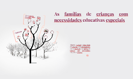 As famílias de crianças com necessidades educacionais especi