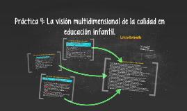 Práctica 4: La visión multidimensional de la calidad en educ