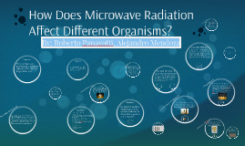 Copy of How Does Microwave Radiation Affect Different Organisms?