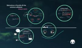Copy of   Estructura y función de las uniones celulares