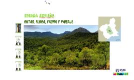 Rutas Flora Fauna y Paisaje