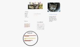 Asian Sand Cat