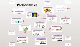 Photosynthesis: Phase I