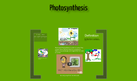photosythesis timeline Biology interactive notebook bundle- over activities for your biology class interactive notebook inb topics include evolution, ecology, cells, cell transport.