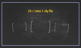 Chiếc Luxus & cây Oliu