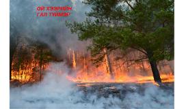 Copy of ой хээрийн түймэр