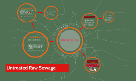 Untreated Raw Sewage