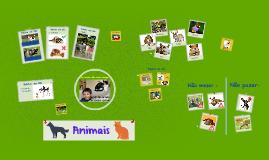 Copy of Animais de Estimação
