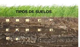 TIPOS DE SUELOS
