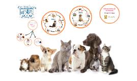 Cuidados básicos de las mascotas