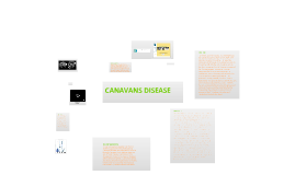 Canavans Disease