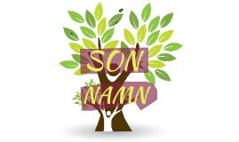 Son-namn