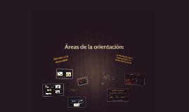 Áreas de la orientación: