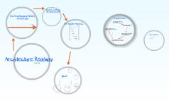 Arch Roadmap 2009