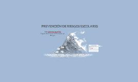 PREVENCIÓN DE RIESGOS ESCOLARES