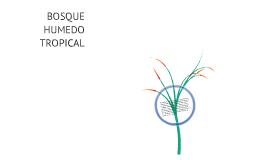 BOSQUE HÚMEDO TROPICAL COLOMBIANO