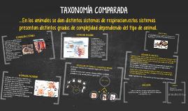 Copy of TIPOS DE SISTEMAS RESPIRATORIOS EN LOS ANIMALES.