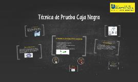 Tecnica de Prueba Caja Negra