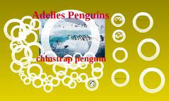 Science Adelie penguins