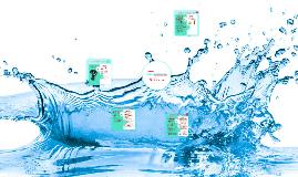 Aguas Savorizadas