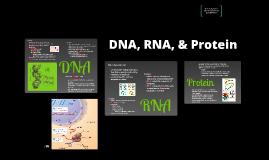 BI 3: DNA, RNA, & Protein