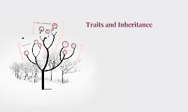 Traits and Inheritance