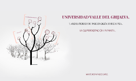 UNIVERSIDAD VALLE DEL GRIJALVA.