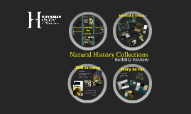 Natural History Collections Bioblitz Review - Internal Talk
