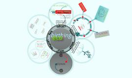 eco^birthing