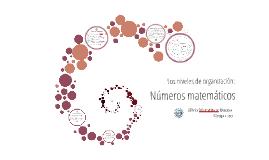 Los niveles de organización, los números
