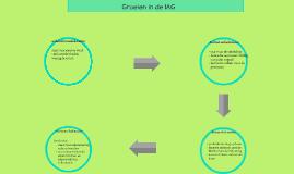 Groeien in de IAG