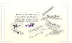 """Soutenance mémoire """"Neutralité du net, filtrage et régulation du réseau"""""""