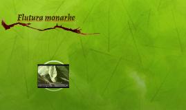 Flutura monarke